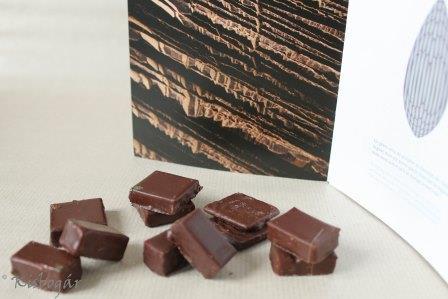 a csokikhoz kapott kis ismertetőben a szobrászatába is betekintést nyerhetünk